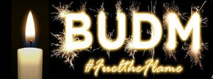 budm fuel the flame cover photo