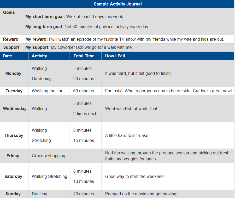 Activity Journal Example